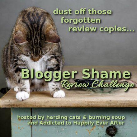 blogger shame