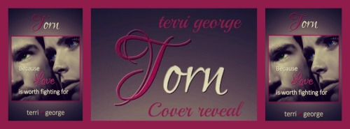 TORN Cover reveal